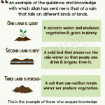 3 kinds of soil